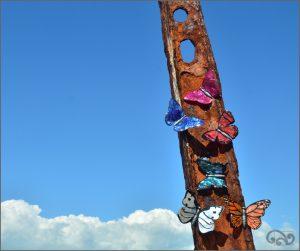 Paua butterflies