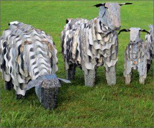 Corrugated iron sheep